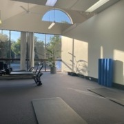 physiotherapy shepp